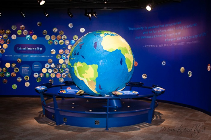Discovery Place Charlotte